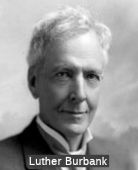 Luther Burbank