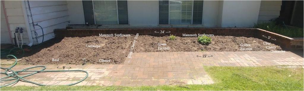 Garden - Front Plot